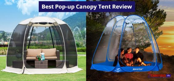 17 Best Pop up Canopy tent Review & comparison in 2020